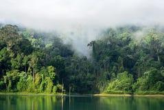Landschaft des dichten tropischen Regenwaldes bei Rajjaprabha-Verdammung oder bei Cheow Lan Dam Guilin von Thailand Stockfotografie
