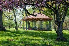 Landschaft des Druide-Parks in Baltimore, Maryland stockfotos