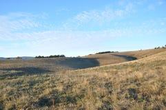 Landschaft des Feldes Lizenzfreie Stockfotos