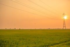 Landschaft des Feldes im ruhigen Moment Stockfotografie