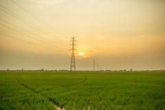 Landschaft des Feldes im ruhigen Moment Lizenzfreies Stockfoto