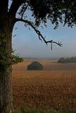 Landschaft des frühen Morgens von Feldern und von Wiesen Lizenzfreie Stockfotos