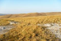 Landschaft des gelben Feldes mit Steinen Lizenzfreies Stockfoto