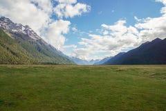 Landschaft des grünen Yard mit Berg mit Schnee auf die Oberseite am sonnigen Tag in Neuseeland Lizenzfreie Stockfotografie