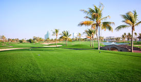 Landschaft des grünen Golfplatzes Stockbilder