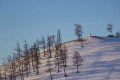 Landschaft des Hügels umfasst durch Schnee und Kiefer nahe Khovsgol in Mongolei Stockbilder