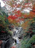 Landschaft des Herbstes Stockfoto