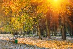Landschaft des Herbstparks Ansicht von gefallenen Gelbblättern und von erstem Schnee im Sonnenschein Stockfotos