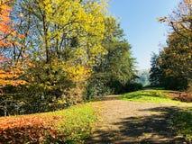 Landschaft des Herbstparks mit Straße Lizenzfreie Stockbilder