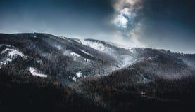 Landschaft des Hochgebirges mit Wald am bewölkten Tag stockfotografie