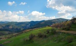 Landschaft des jungen Grüns Lizenzfreies Stockfoto