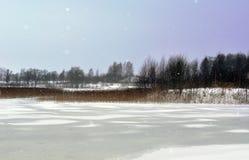 Landschaft des kalten, schneebedeckten Tages im Januar stockfotos
