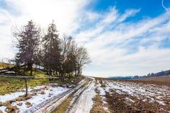 Landschaft des Landwirtschaftsfeldes und -wiese Vorbereitung für Frühling Bäume nahe der Straße, blauer Himmel Lizenzfreie Stockfotos