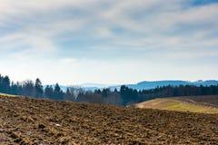 Landschaft des Landwirtschaftsfeldes und -wiese Vorbereitung für Frühling Bäume nahe der Straße, blauer Himmel Stockfotografie