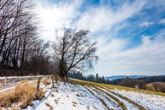 Landschaft des Landwirtschaftsfeldes und -wiese Vorbereitung für Frühling Bäume nahe der Straße, blauer Himmel Lizenzfreie Stockbilder