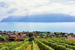 Landschaft des Lavaux-Weinberg-Terrassenwanderwegs von der Schweiz Lizenzfreies Stockbild