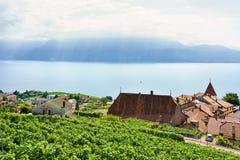 Landschaft des Lavaux-Weinberg-Terrassenwanderwegs von der Schweiz Stockfoto