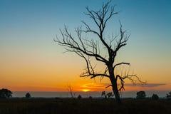 Landschaft des Morgensonnenaufgangs Stockfoto