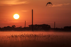 Landschaft des Morgensonnenaufgangs Lizenzfreies Stockfoto