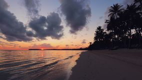 Landschaft des Paradiestropeninselstrandes und des sch?nen Sonnenaufgangs Tropischer Strand mit Palme stock video footage
