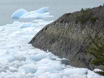 Landschaft des Patagonia Stockfotografie