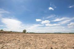 Landschaft des Reisfeldes nach Ernte mit Hintergrund des blauen Himmels im Nachmittagssonnenlicht an der Spottschrift Thailand Lizenzfreie Stockfotografie