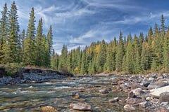 Landschaft des Schaf-Flusses Lizenzfreie Stockbilder