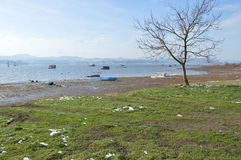Landschaft des Sees Stockfotos