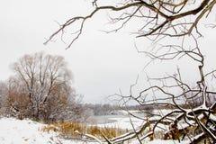 Landschaft des Spätherbsts mit einer alten Weide auf der schneebedeckten Bank von einem gefrorenen See Stockfotos