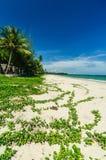 Landschaft des Strandes lizenzfreie stockfotografie