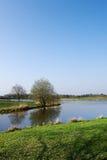 Landschaft des Teichs im Früjahr Stockfotos