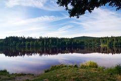 Landschaft des Teichs morgens Stockfotografie