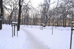 Landschaft des verschneiten Winters Lizenzfreie Stockfotos