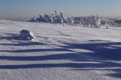 Landschaft des verschneiten Winters in den Bergen Stockfotografie
