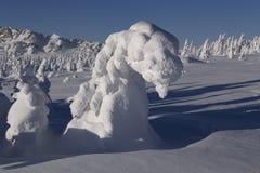 Landschaft des verschneiten Winters in den Bergen Lizenzfreies Stockfoto