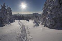 Landschaft des verschneiten Winters in den Bergen Lizenzfreie Stockfotografie