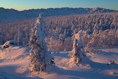 Landschaft des verschneiten Winters in den Bergen Lizenzfreie Stockfotos