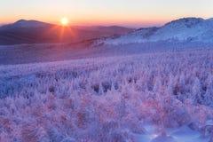 Landschaft des verschneiten Winters in den Bergen Stockfotos