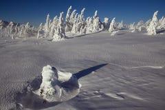 Landschaft des verschneiten Winters in den Bergen Lizenzfreies Stockbild