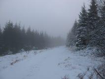 Landschaft des verschneiten Winters mit einer Straße stockbild