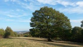 Landschaft Deutschland Siegen lizenzfreies stockbild