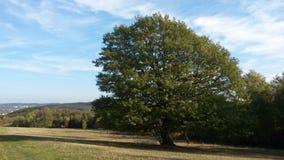 Landschaft Deutschland Siegen lizenzfreie stockfotografie