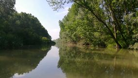 Landschaft in Donau-Delta, Rum?nien stock video