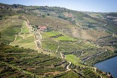 Landschaft in Duero-Tal stockbild