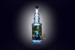 Landschaft in einer Flasche Stockbild