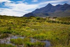 Landschaft eines Feldes und der Cuillin-Bergspitzen Lizenzfreie Stockfotos