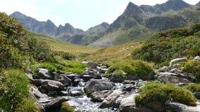 Landschaft eines Gebirgsbachs, auf den Pyrenäen von Andorra stock video