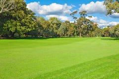 Landschaft eines grünen Golffeldes Lizenzfreies Stockfoto
