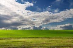 Landschaft eines grünen Grases und des dunkelblauen Himmels Stockfotos