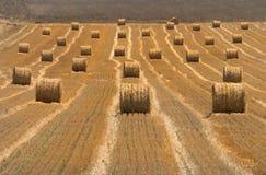 Landschaft eines neuen gepflogenen Weizenfeldes mit gerollten Ballen Heu Lizenzfreies Stockbild